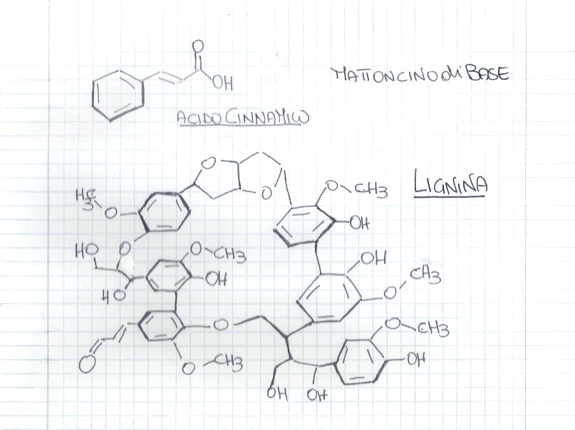 La  chimica del legno